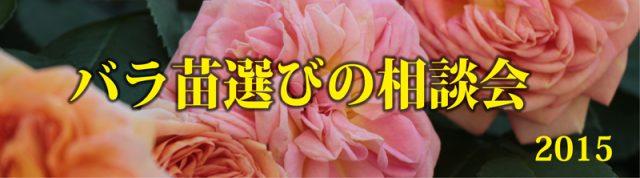 バラ相談会バー2