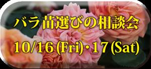 2015バラ相談会サイドバー用アイコン