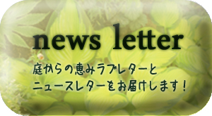 ニュースレターアイコン作成のコピー